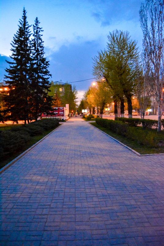 вечер. огни - Света Кондрашова
