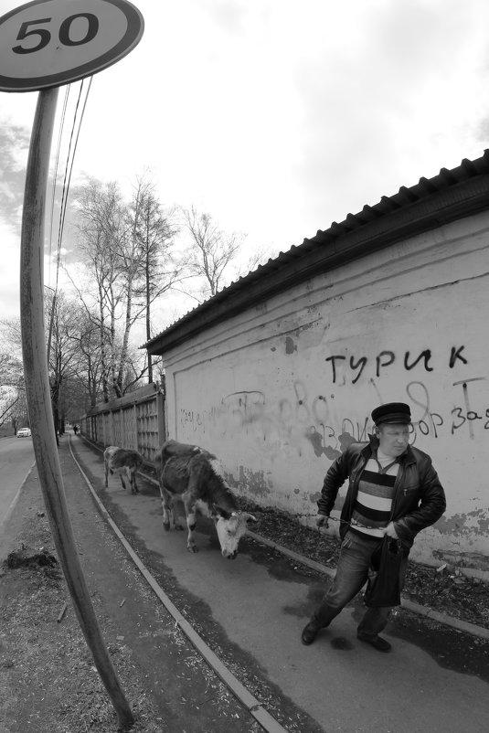 Скоростной режим - Владимир Шехтер