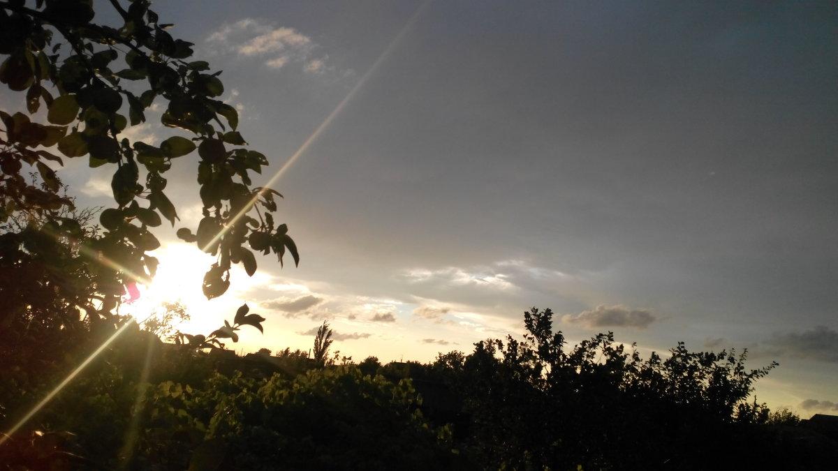 Вечер в деревне - Татьяна Королева