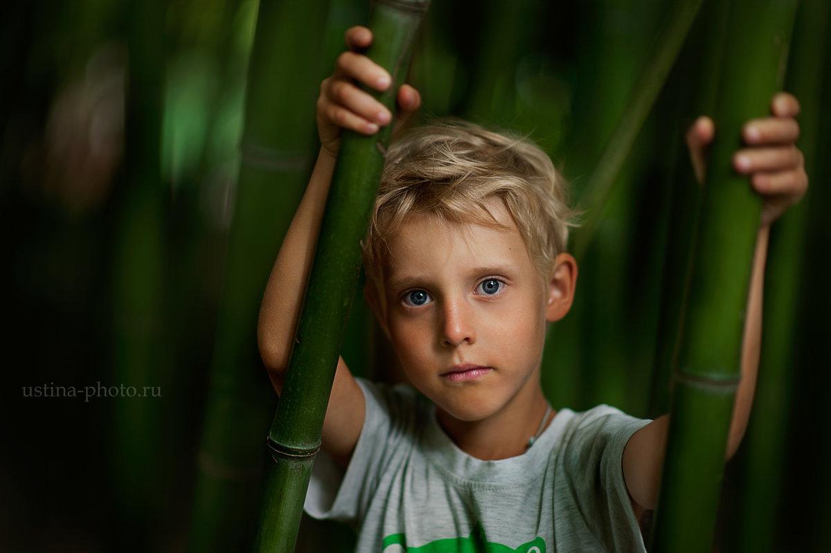 в бамбуковой роще - Устинья Онищук