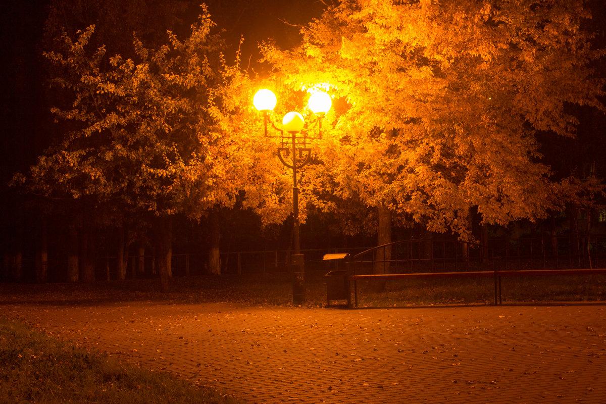 Романтика осени - Ирина Холодная