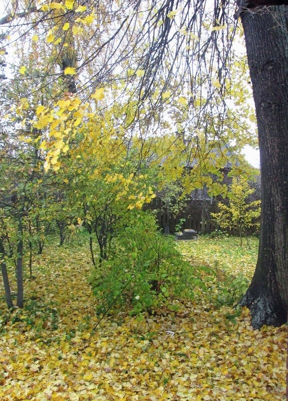 Осень за моим окном. - Михаил Попов