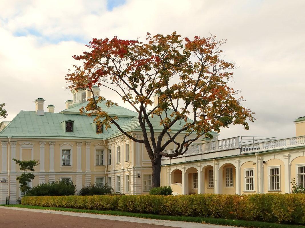 Меншиковский дворец. - Владимир Гилясев