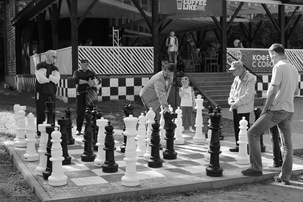Шахматисты - Елена