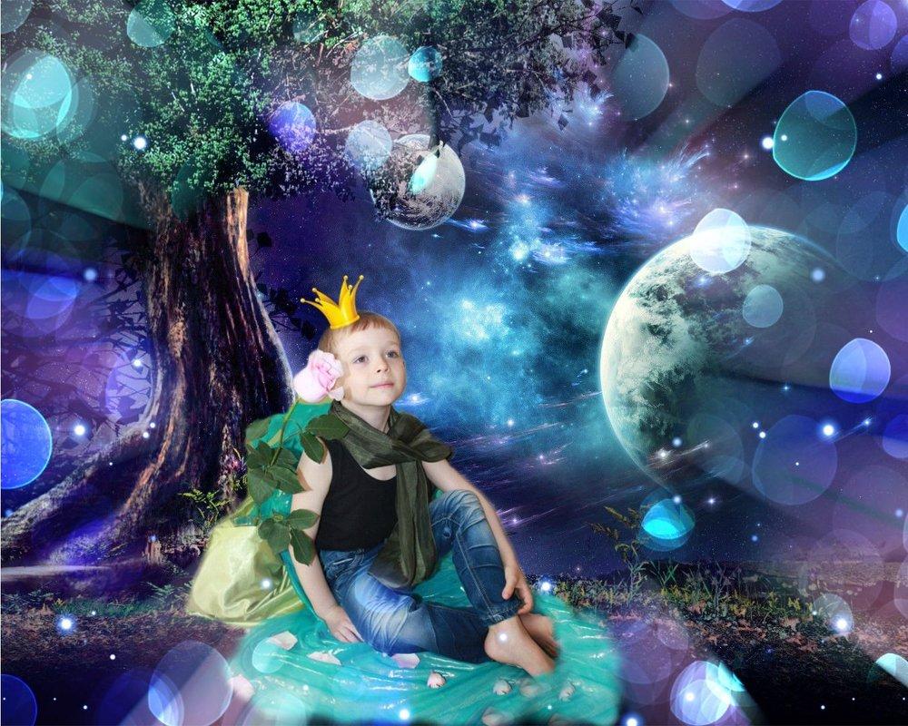 Маленький принц))) - Оксана К
