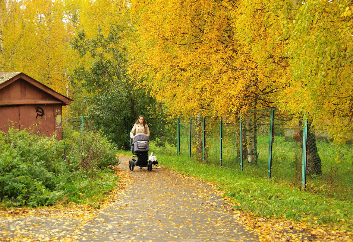 Осень в Молочном - Валерий Талашов