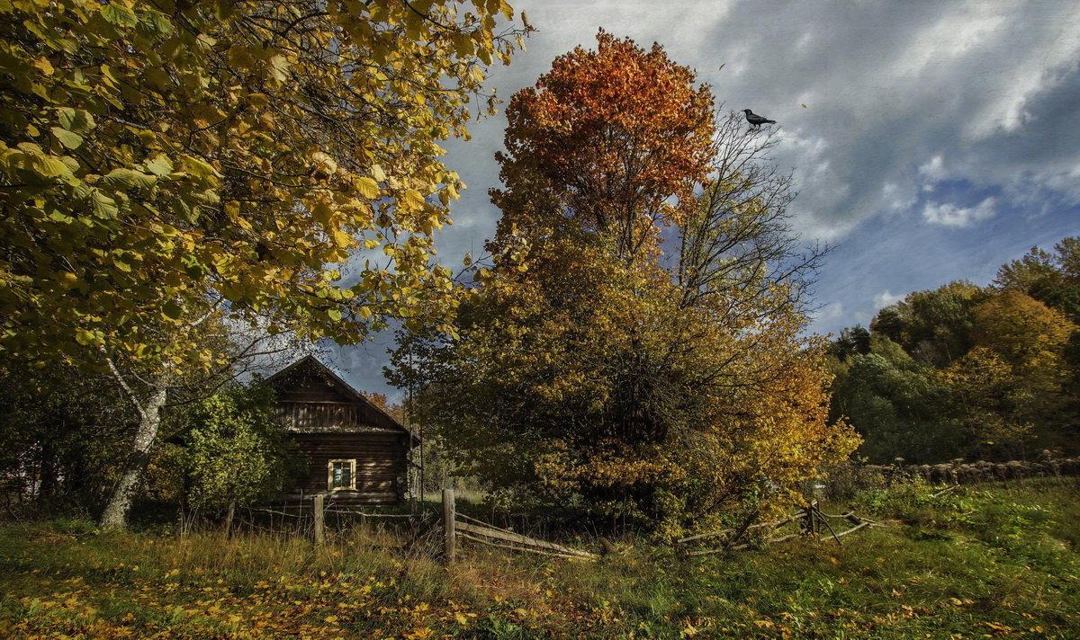 Осенние зарисовки... - Ирина Елагина