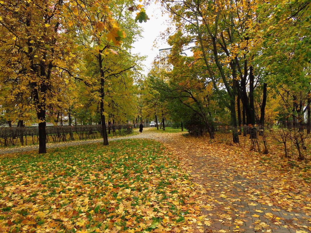 Зрелая осень - Андрей Лукьянов