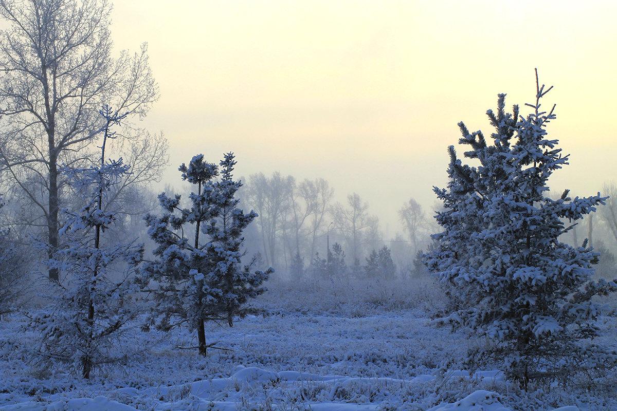 Морозный рассвет - Екатерина Торганская