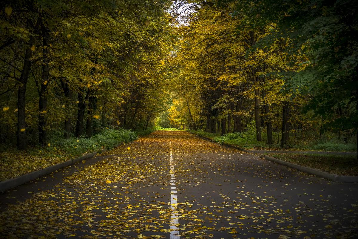 Осенняя дорога - Алексей Строганов