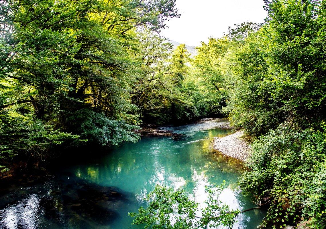 горная речка в абхазии - Светлана Луговая