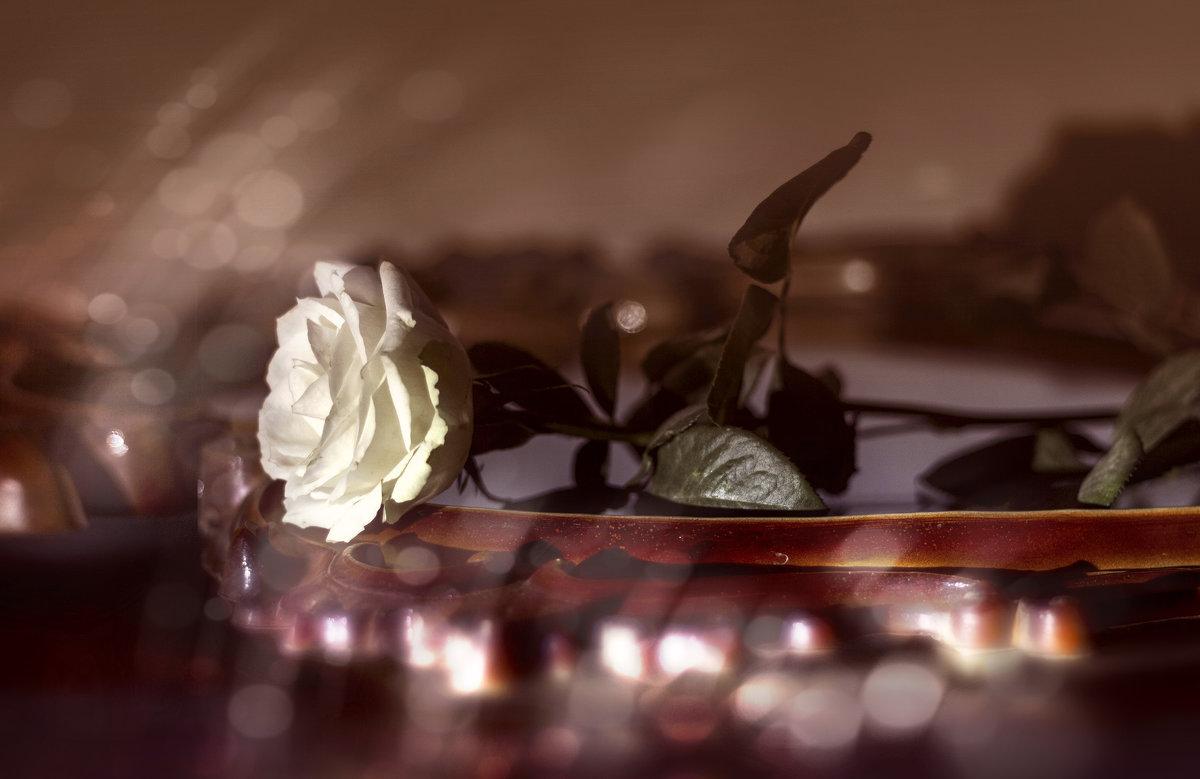 Романтическое настроение. - Татьяна