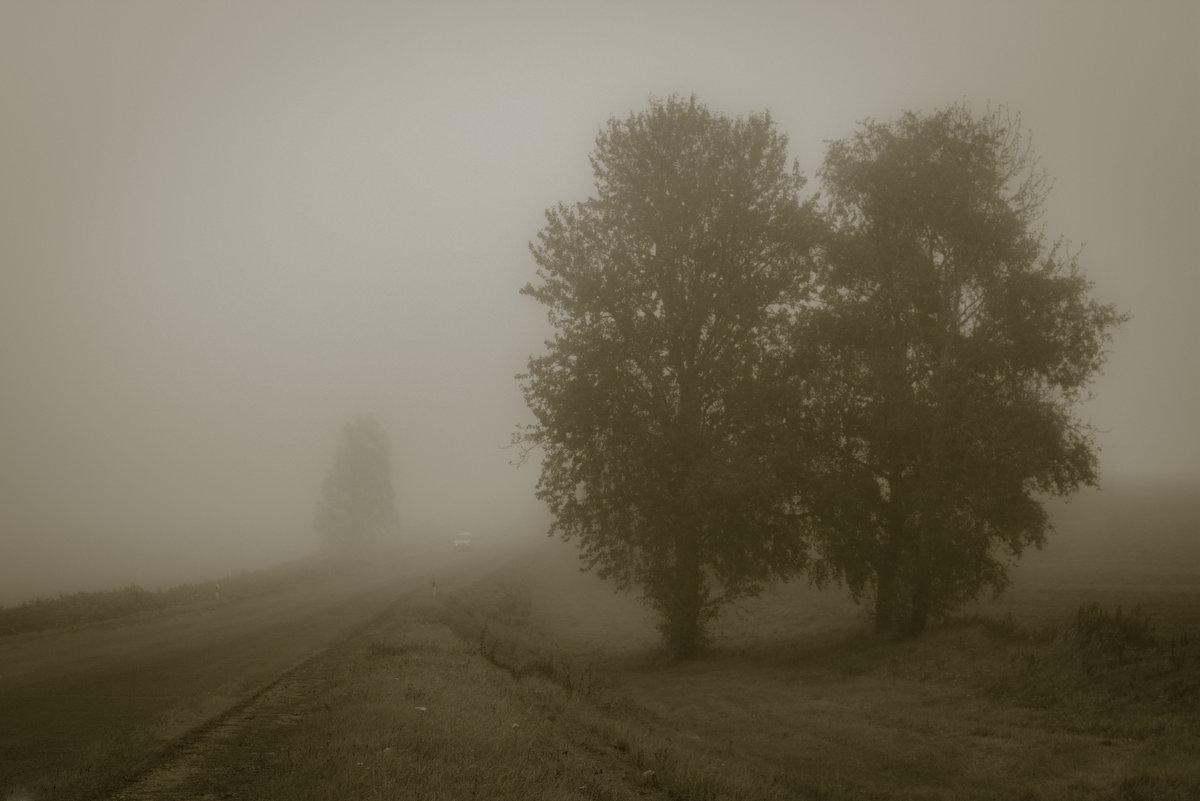 из тумана - Ира Петрова