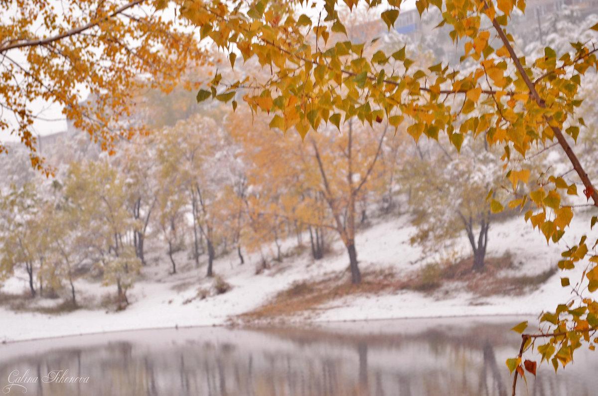 Октябрьская зима - galina tihonova