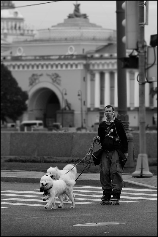 2 собачки - Цветков Виктор Васильевич