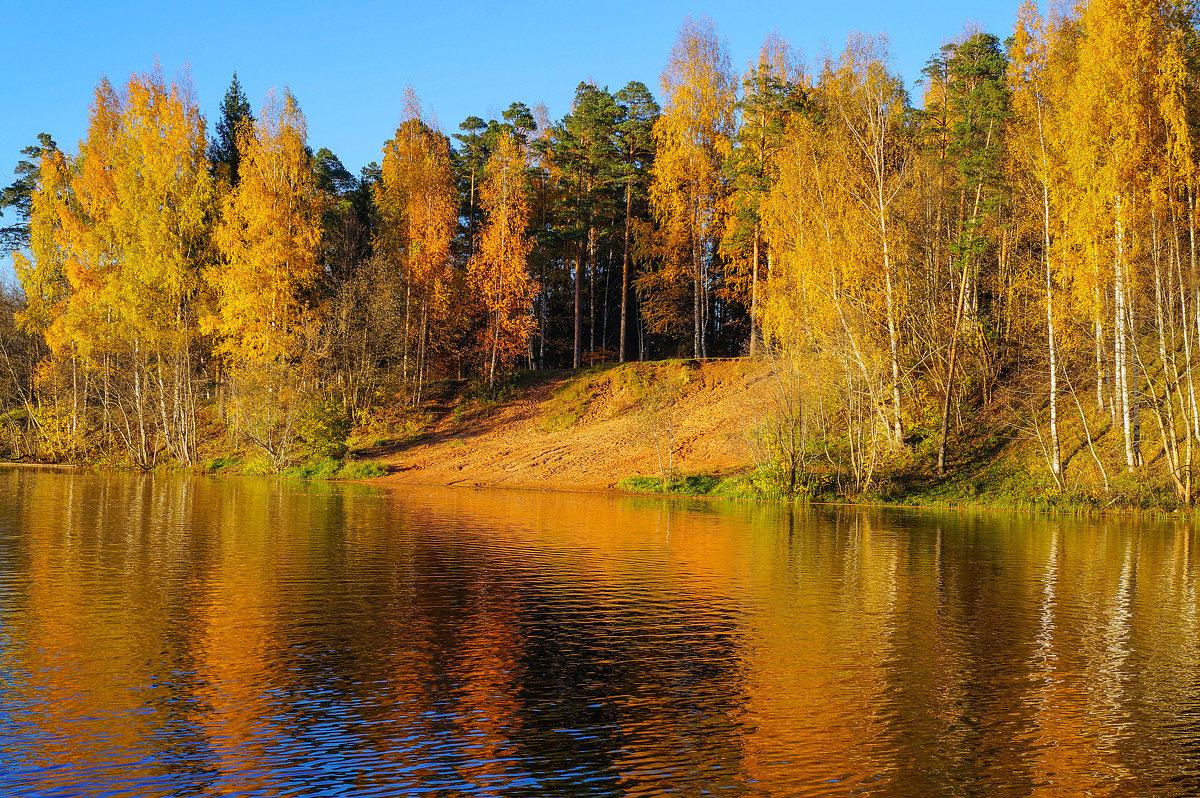 Краски осени - Анатолий