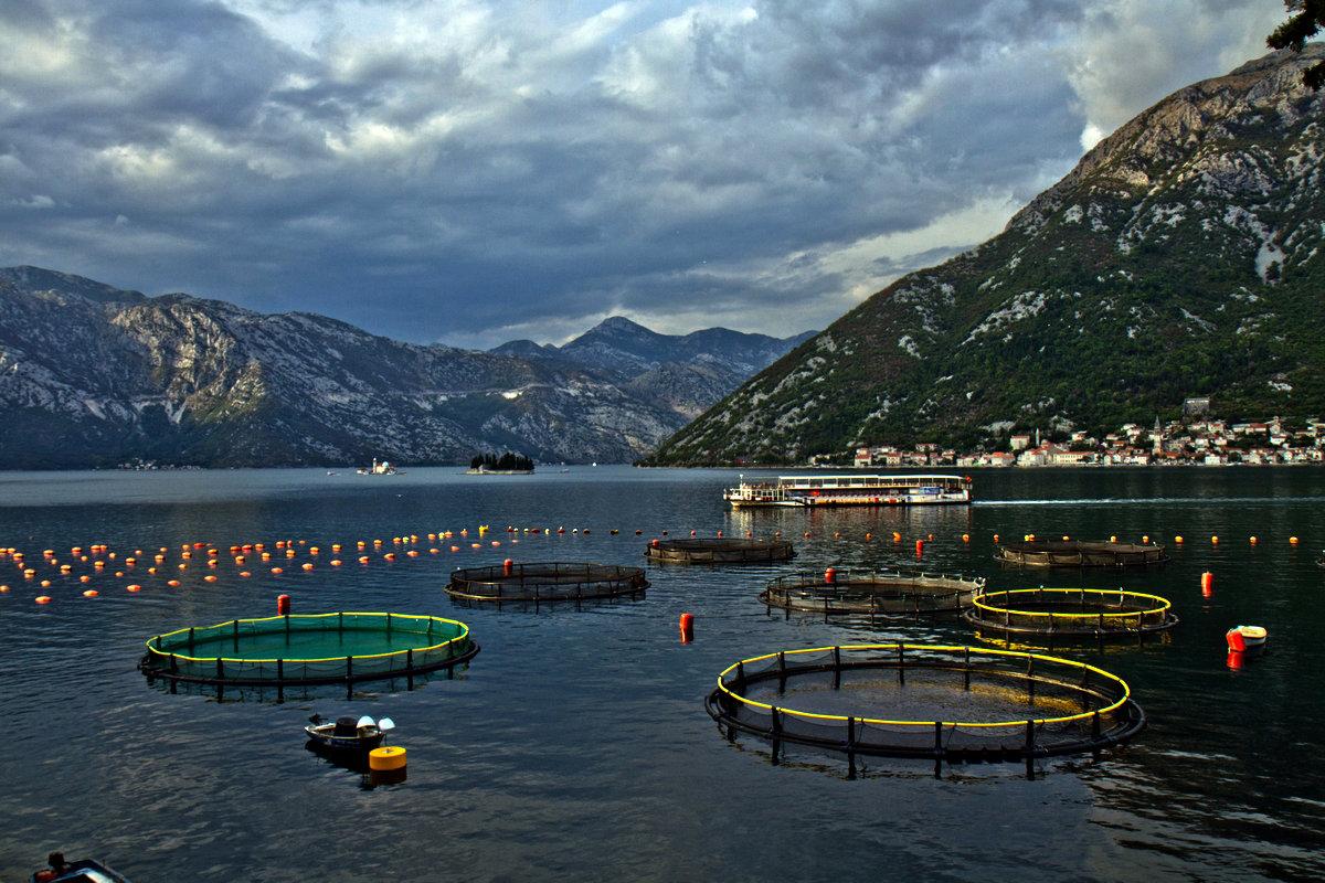 Montenegro- Черногория - Владимир Сарычев