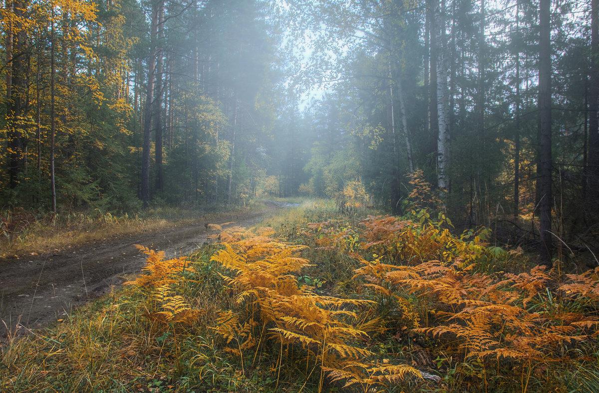 Осенний день - vladimir Bormotov