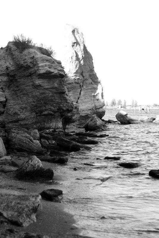 камень-вода - сергей швед