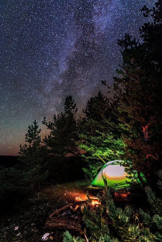 Ночь в лесу - Александр Хорошилов