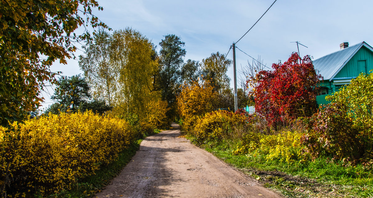 Осень в деревне. - Владимир Безбородов