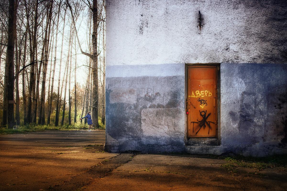 Дверь - Вадим Губин