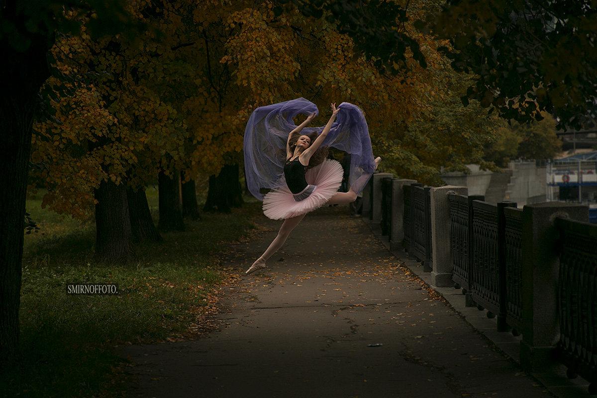 Воздушные танцы - Владимир Смирнов
