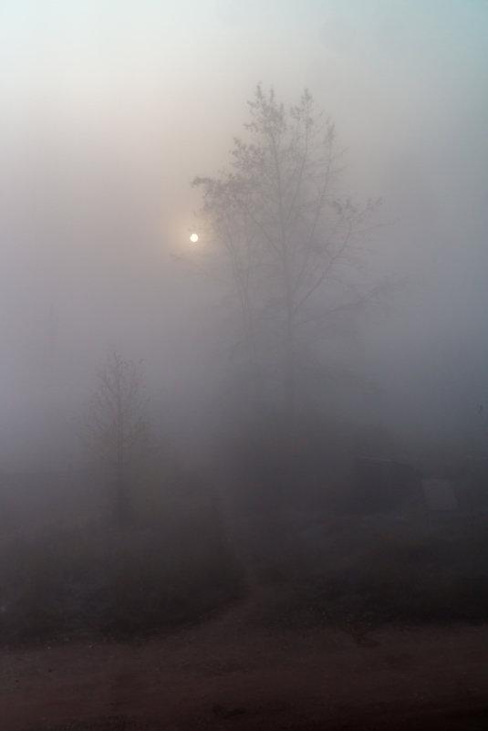 Дымное утро сентября. - Андрей Борисенко