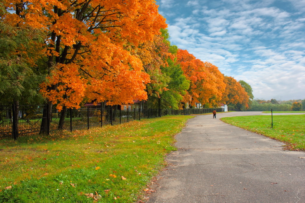 Осень цветастая. - Laborant Григоров