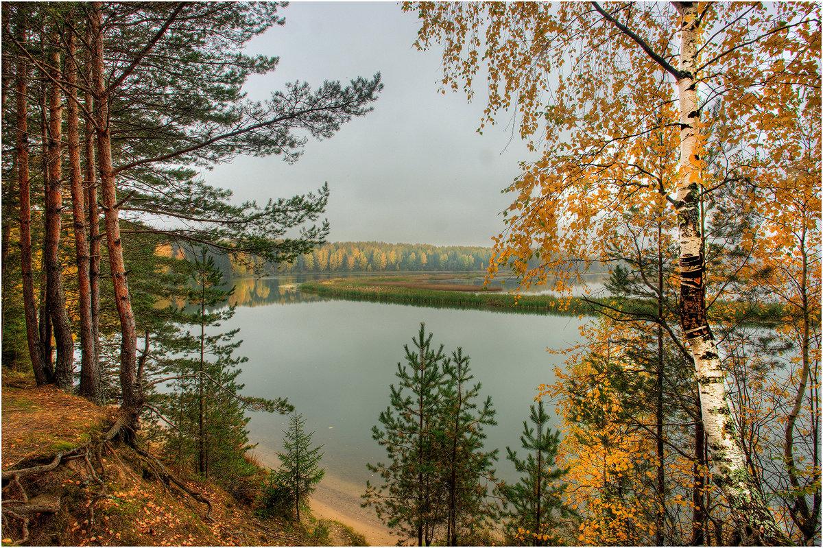 Осень на Мере - Nikita Volkov