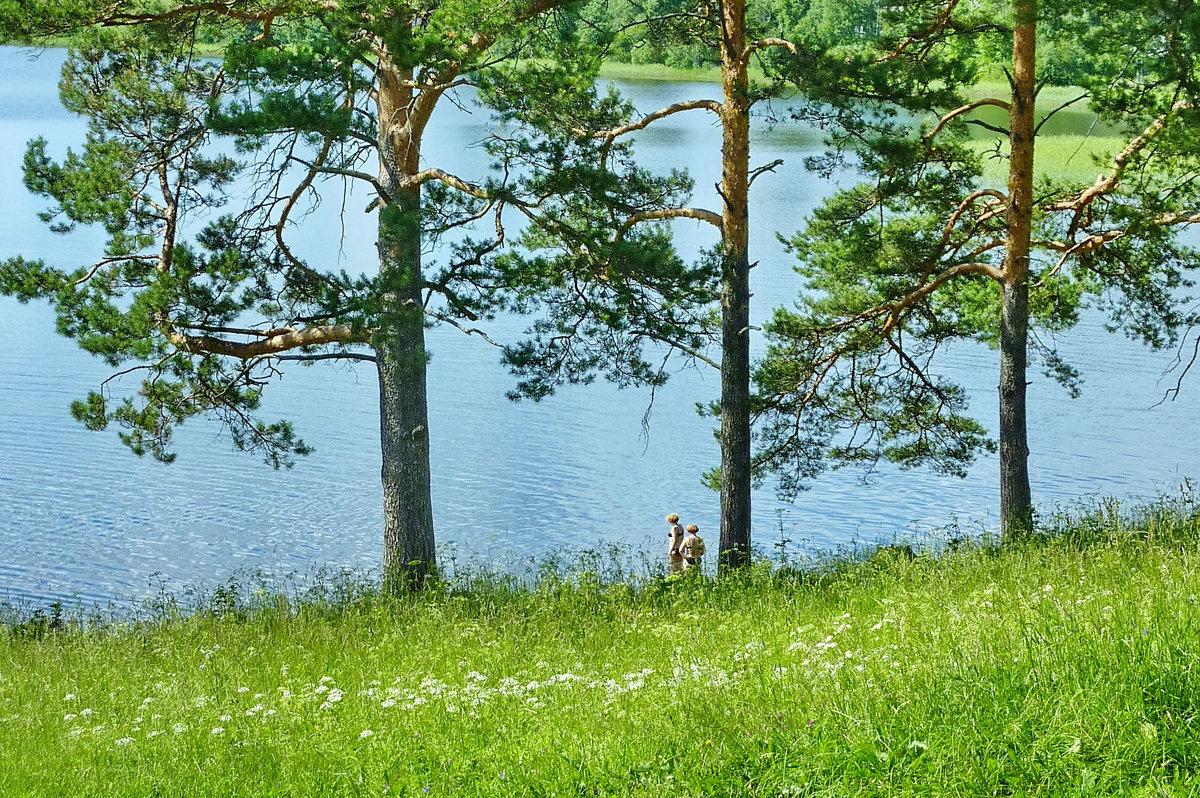 Летний день - Валерий Талашов