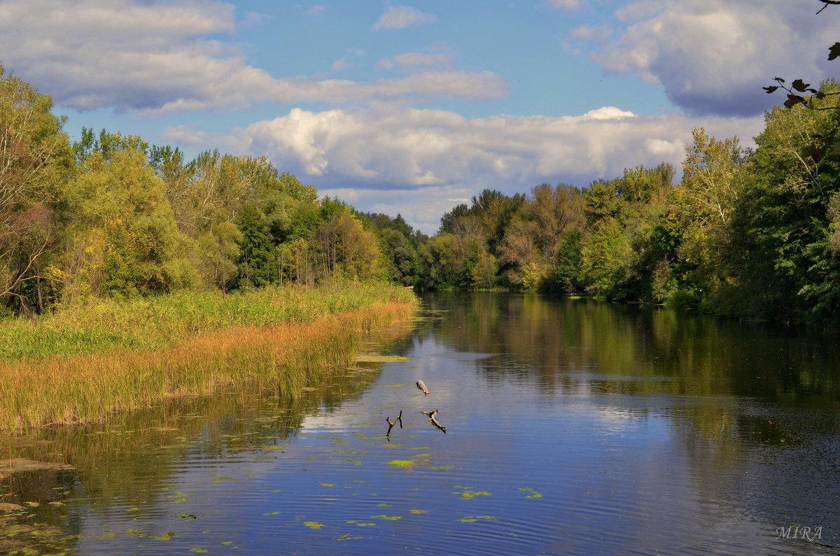 Осень, которую я люблю.... - *MIRA* **
