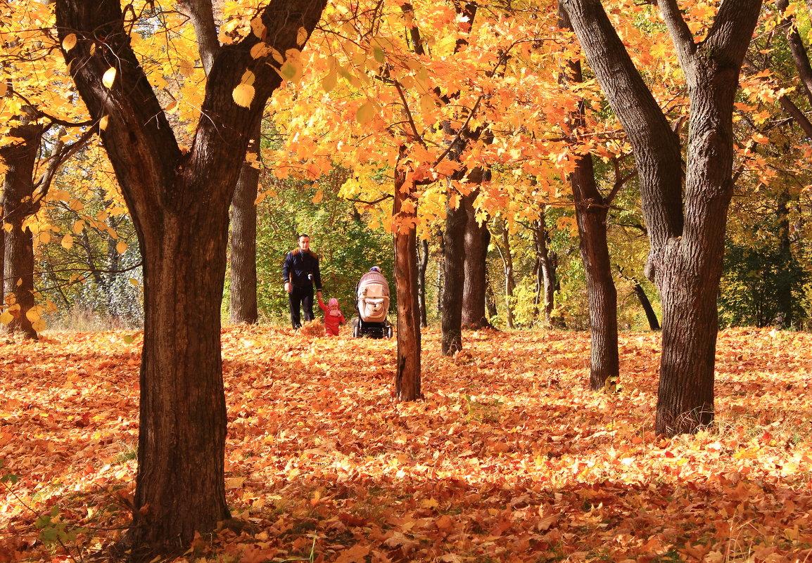 Прогулка в осень - Татьяна Ломтева