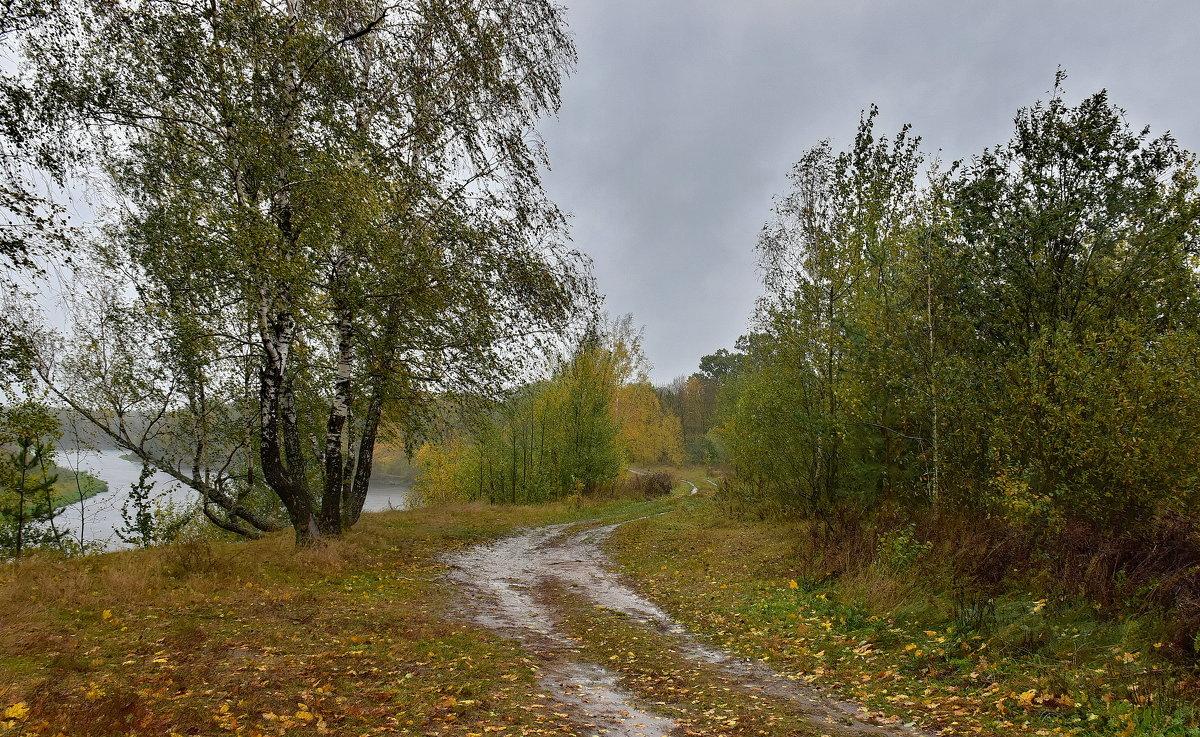 Дождливо... - Валера39 Василевский.