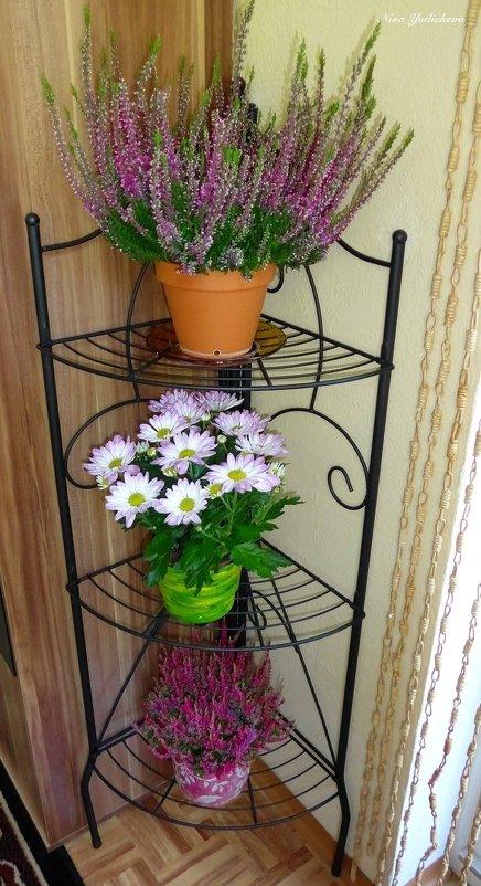Вереск и хризантемы - Nina Yudicheva