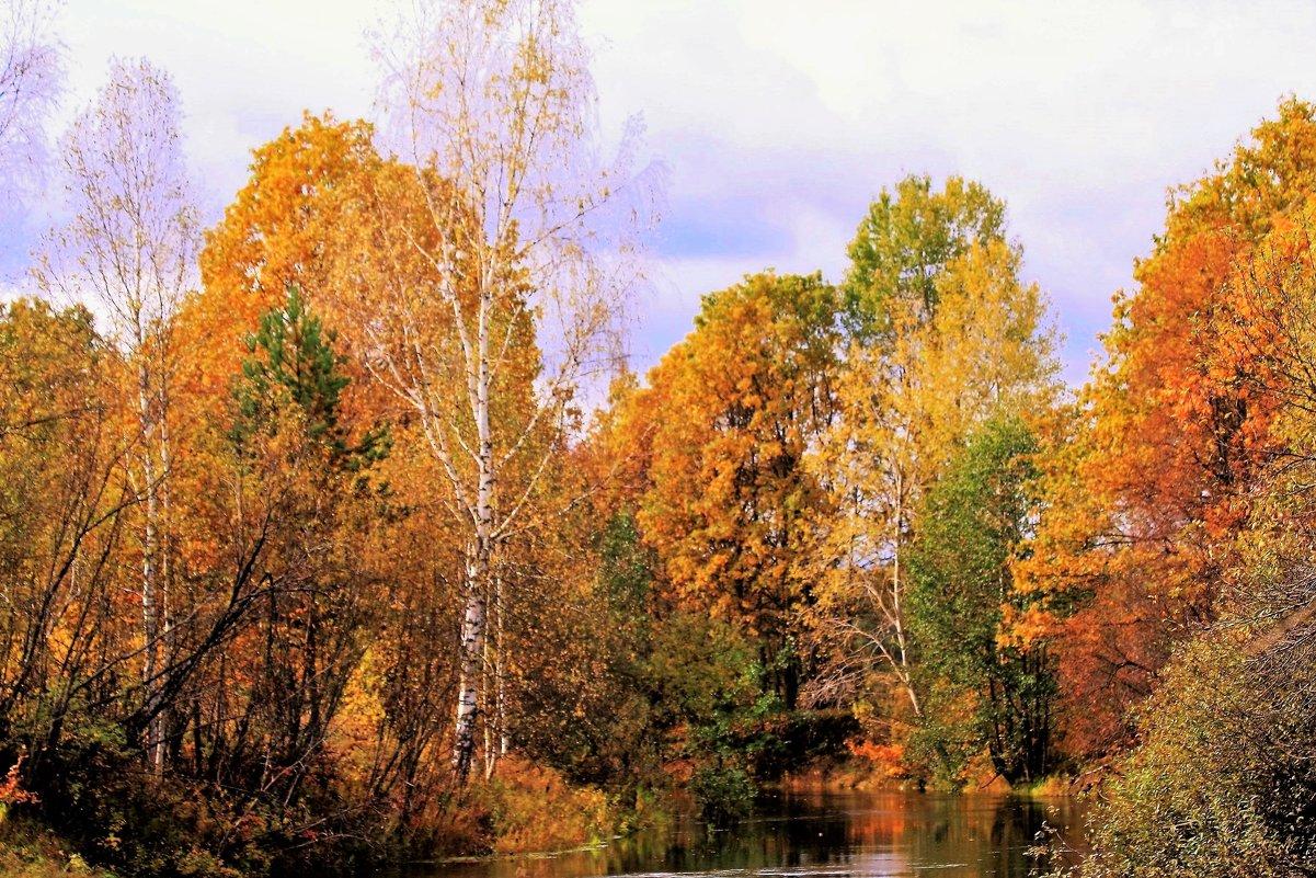 Осень на реке Серёжа. - Николай Масляев