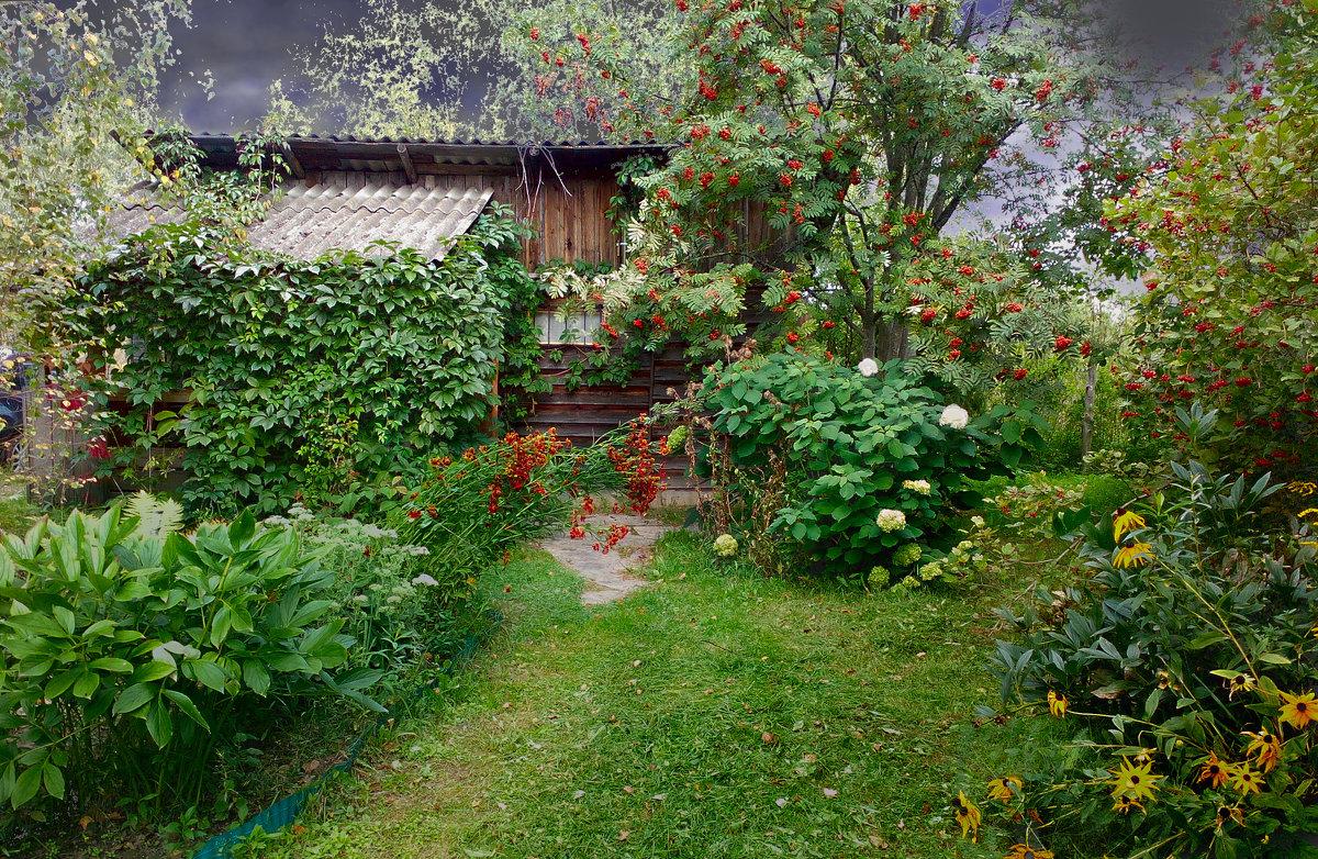 старый сад - Валерий Коноплев