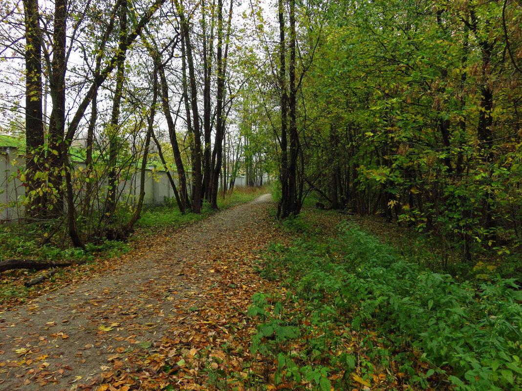Настоящая осень - Андрей Лукьянов