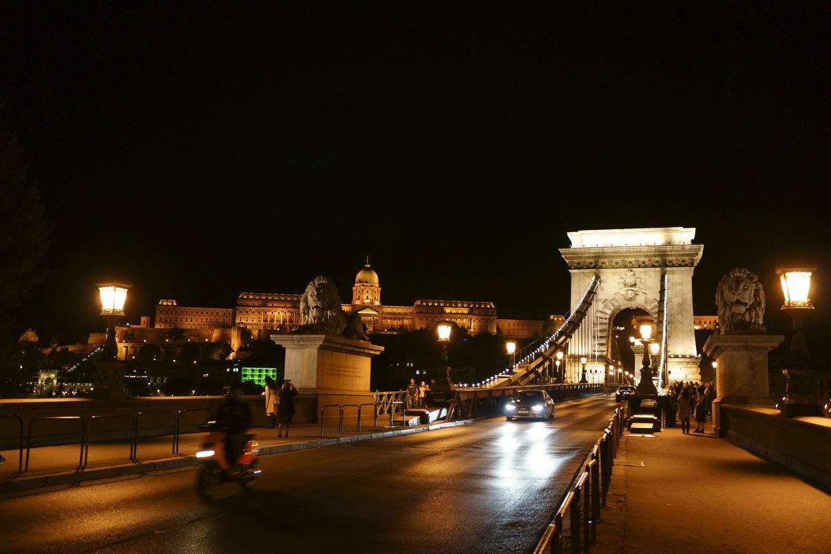 Ночной Будапешт. - Vladimir