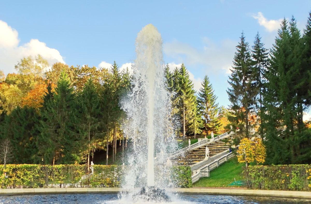 Первый Менажерный фонтан - Владимир Гилясев