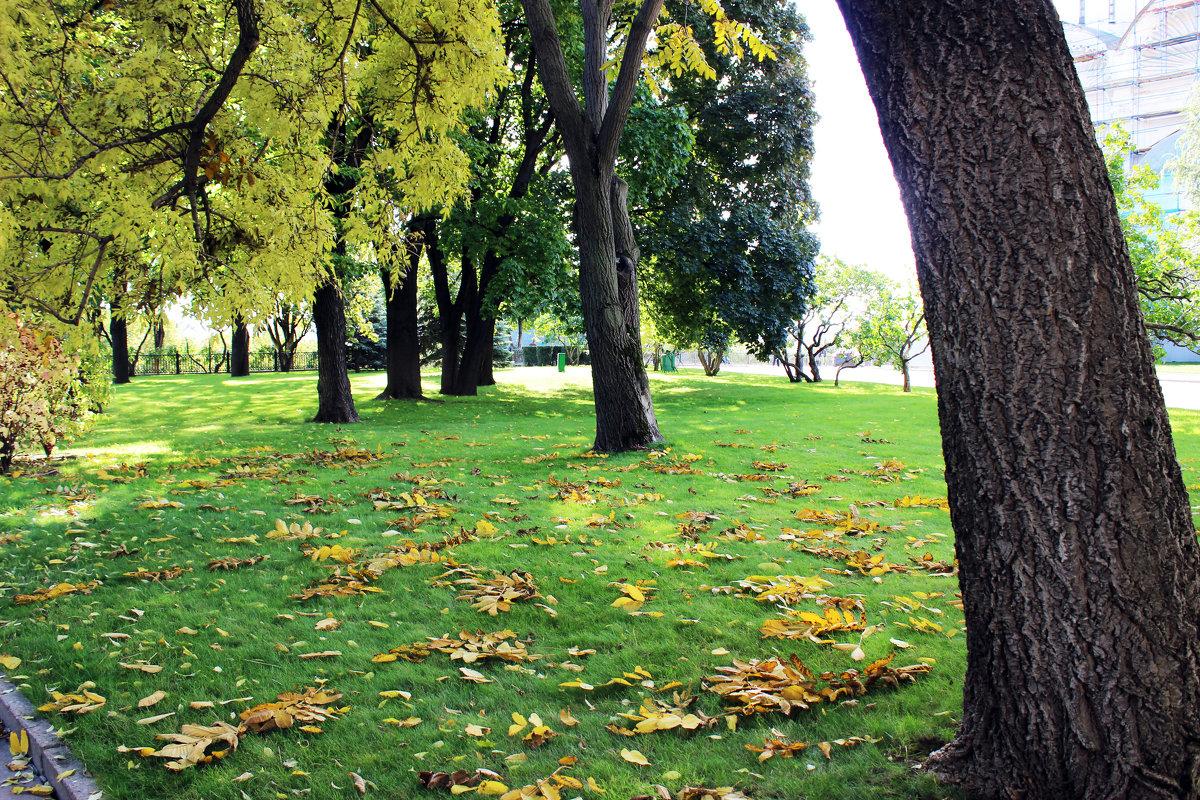 Осень - раиса Орловская