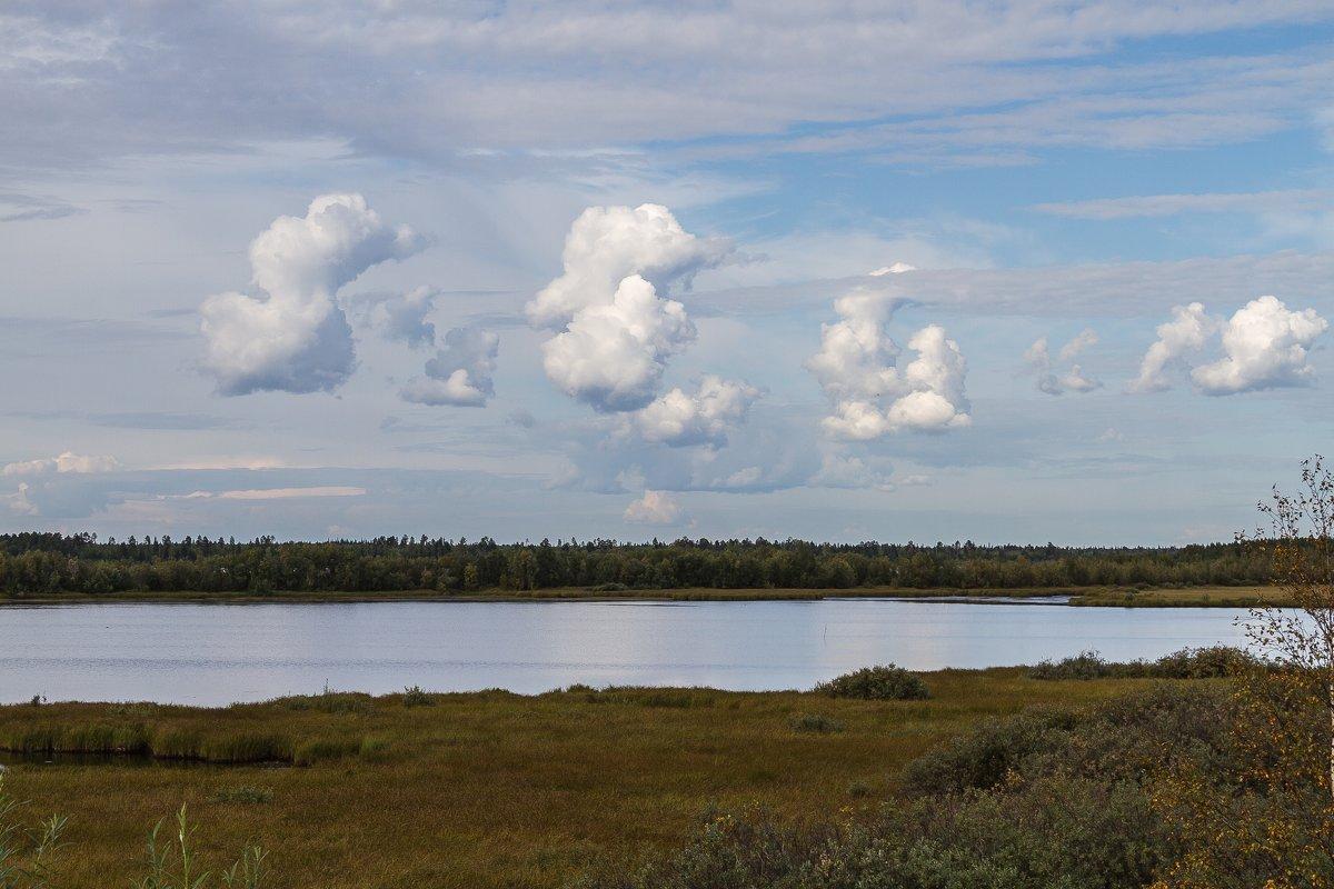 Облака - белогривые лошадки.... - Дмитрий Сиялов