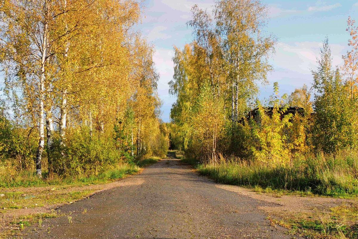 Золотая осень-рыжая лисица - Павлова Татьяна Павлова