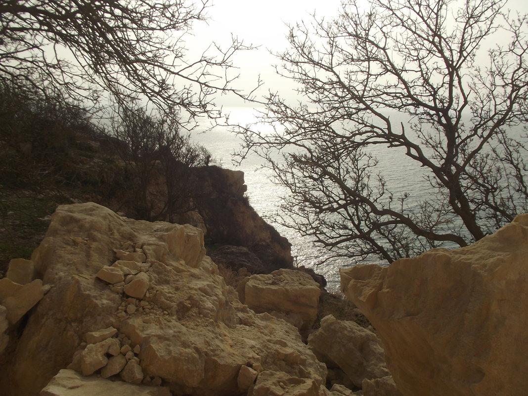 пляж Маяк-2 Севастополь - Роза Бара