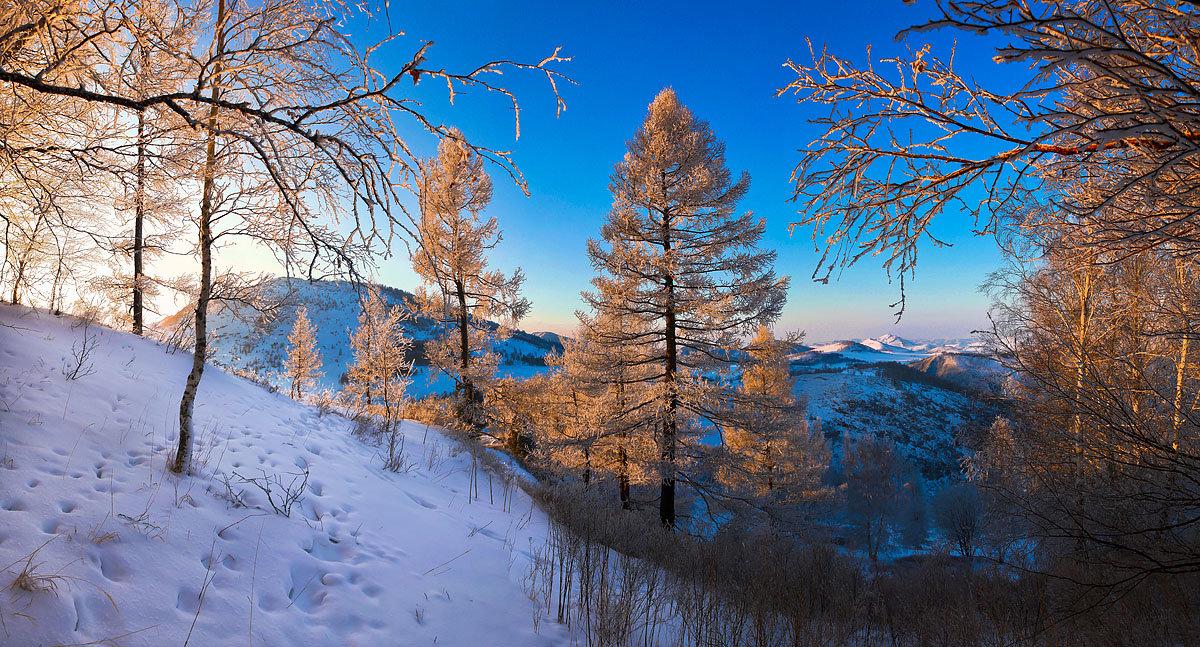 На горы зимние, взор Ваш, пусть неутомимым будет 10 - Сергей Жуков