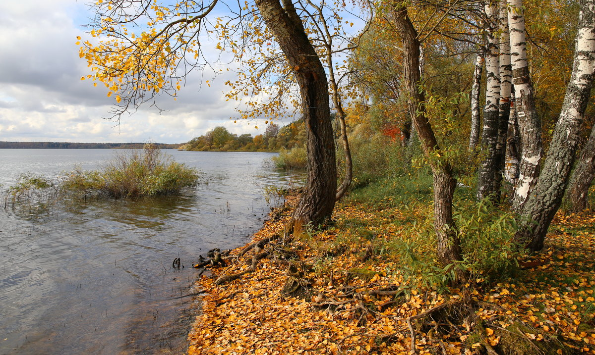 Осень - галина северинова