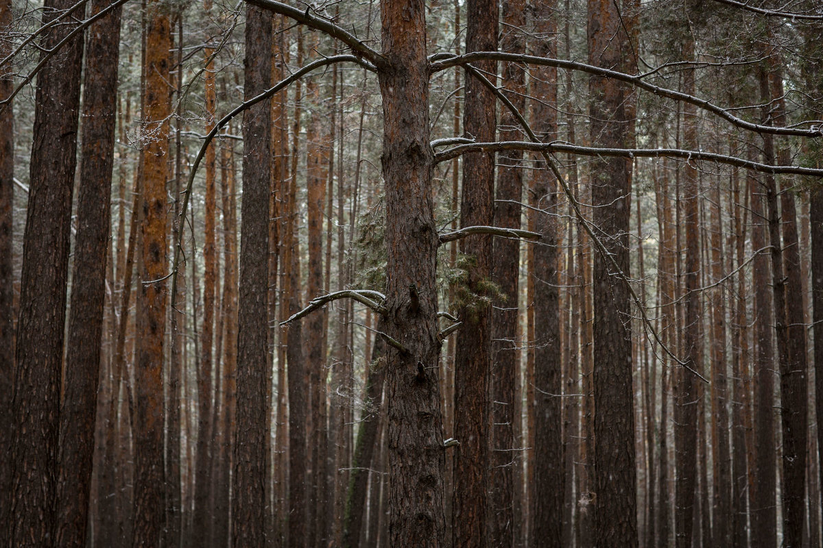 фотофест Каракан - Yulia Golub