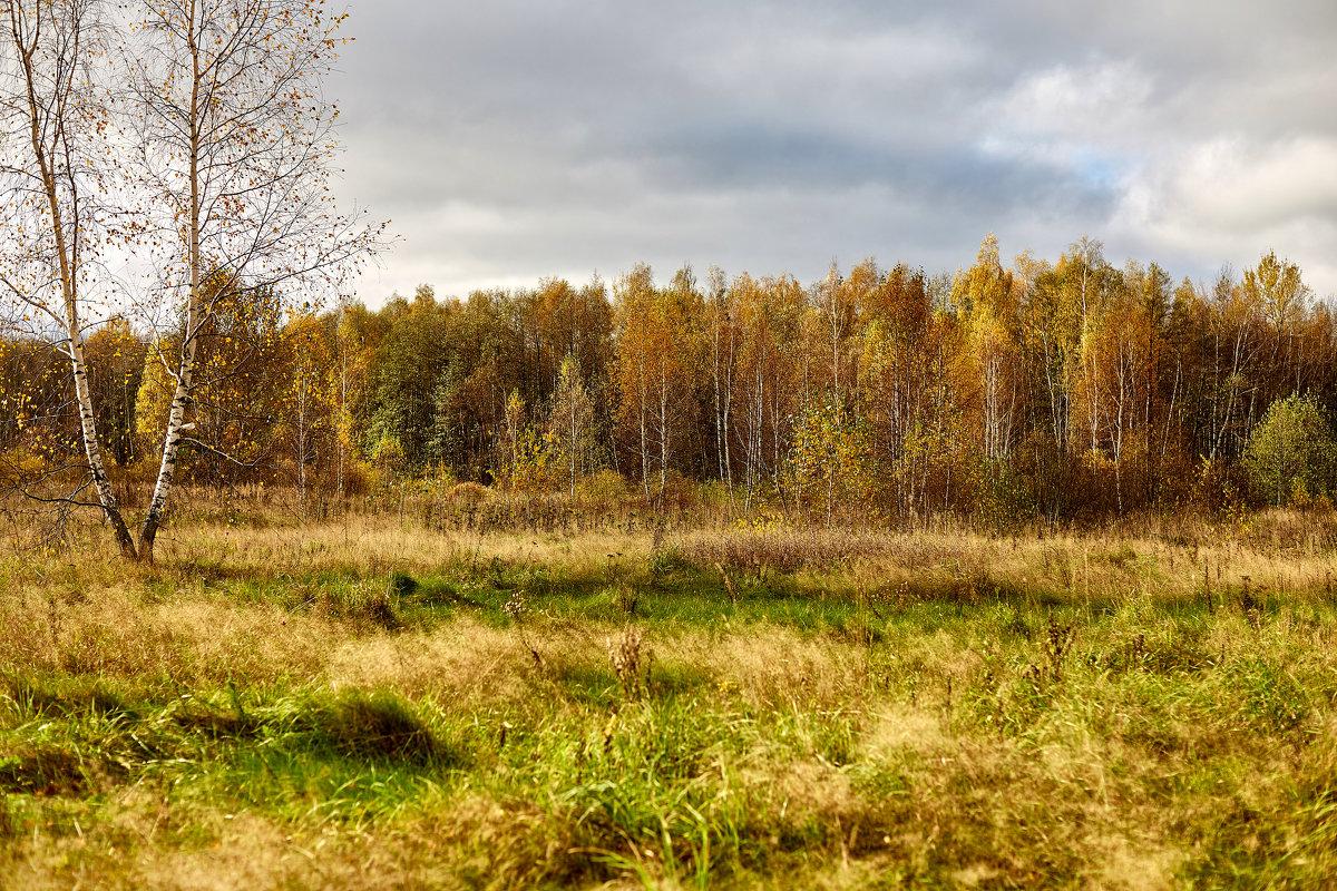 Осень - Сергей Козлов