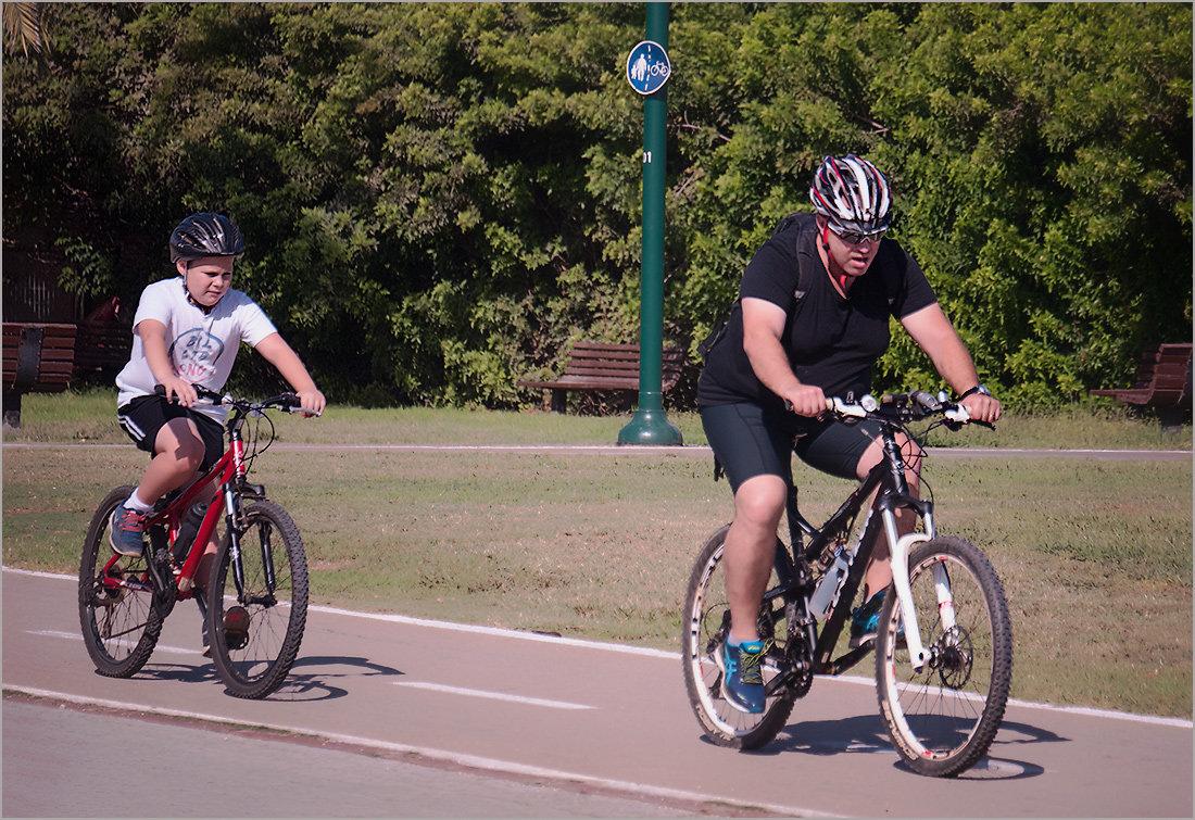 Мир велосипеда-4 - Lmark