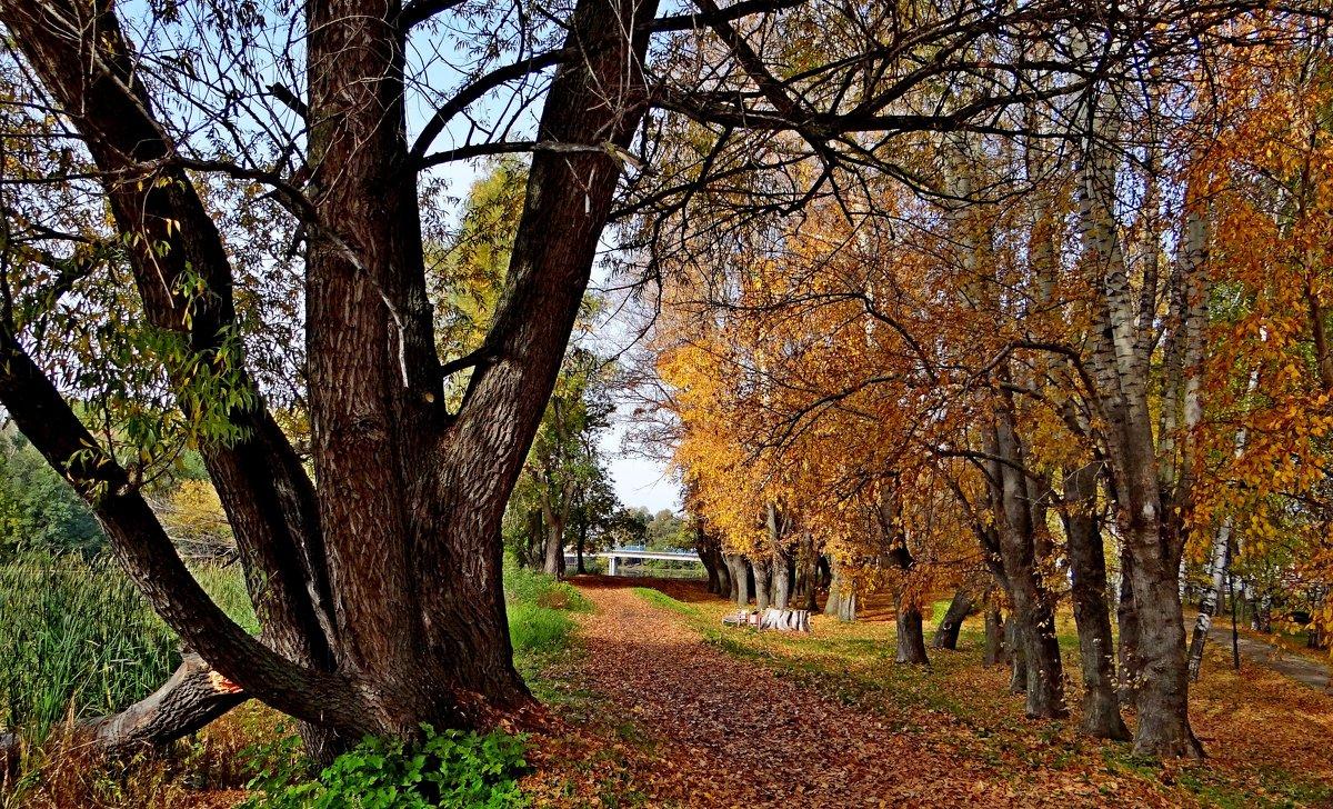 Осень - Юрий Владимирович 34